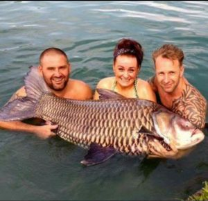 Fishing In Thailand Newsletter January 2017